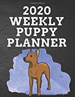 """2020 WEEKLY PUPPY PLANNER: 8.5""""x 11"""" 115 Page Light Miniature Pinscher Dog Lover Gift with Blue on Black Back Academic Year At A Glance Planner Calendar With To-Do List and Organizer And Vertical Dated Pages Great for Light Brown Min Pin Fans (Miniature Pinscher 2020 Planners)"""