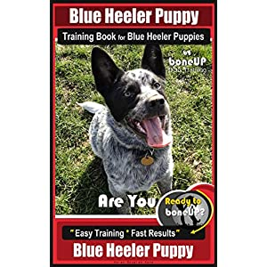 Blue Heeler Puppy Training Book for Blue Heeler Puppies By BoneUP DOG Training: Are You Ready to Bone Up? Easy Steps… Click on image for further info.