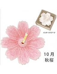 kameyama candle(カメヤマキャンドル) 花づくし(植物性) 秋桜 「 秋桜(10月) 」 キャンドル(A4620515)