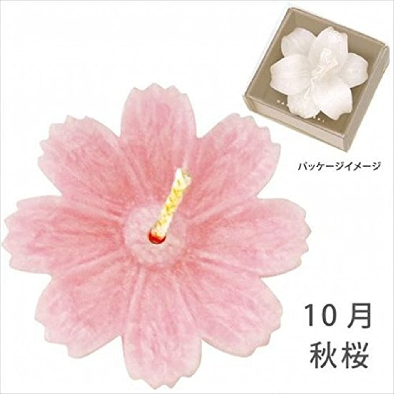 こどもセンターセーブポスターkameyama candle(カメヤマキャンドル) 花づくし(植物性) 秋桜 「 秋桜(10月) 」 キャンドル(A4620515)