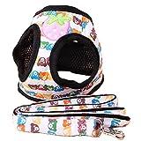 メッシュハーネス・リードセット 小型犬 中型犬 首輪 胴輪 ソフト ベストハーネス 胸あて式 着せやすい キュートなビア柄 かわいい Mサイズ