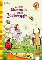 Die kleine Blumenelfe und der Zauberstein: Der Buecherbaer. Mein Abc-Lesestart