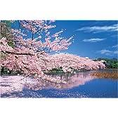 1000ピース 桜咲く不忍池-東京 (50x75cm)