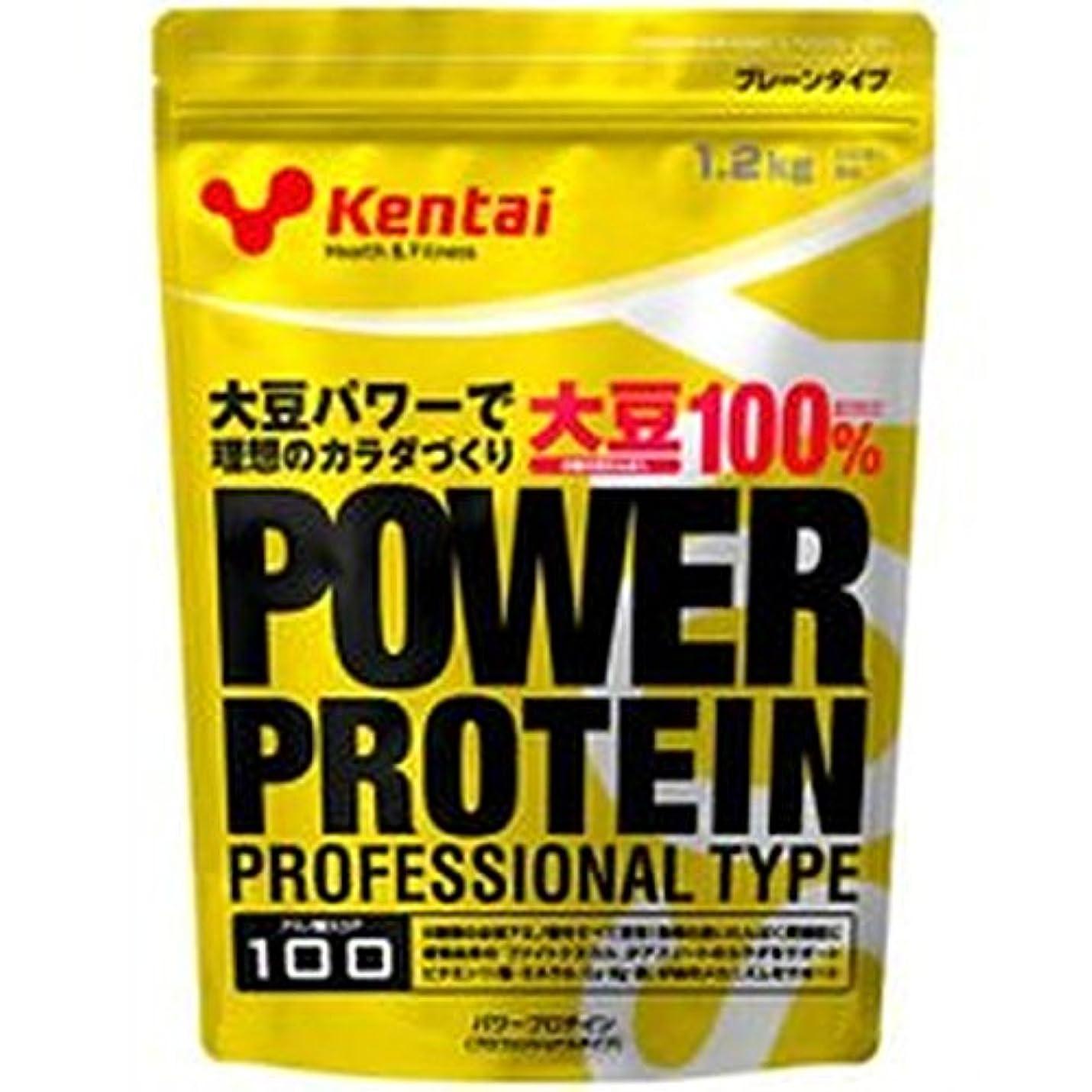 舌な不快なビクターKentai パワープロテイン プロフェッショナルタイプ プレーン1.2kg【2個セット】