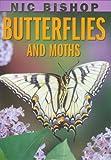 Butterflies and Moths (Nic Bishop)