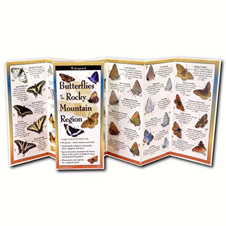 ロッキー山の蝶