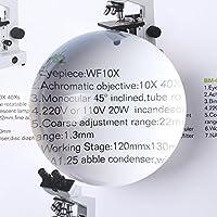 aomekieすべて透明3インチ/ 2.5インチ4xクリスタルPaperweight拡大鏡、高透過率Magnifying Glass Dome 2.5 inch