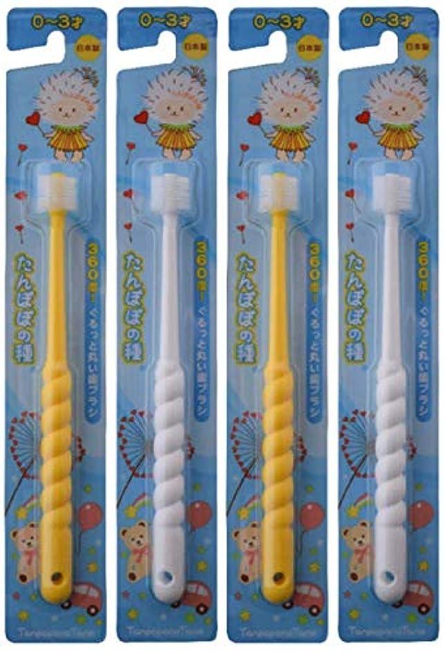 六失うスティーブンソンたんぽぽの種 360度ぐるっと丸い歯ブラシ 極細毛 (0~3歳用 4本セット)