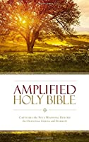 Amplified Holy Bible: Amplified, Dark Orchid/ Deep Plum, Italian Duo-Tone, Ribbon Marker: Captures the Full Meaning Behind the Original Greek and Hebrew