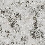 サンゲツ フロアタイル (フロアータイル) 床用塩ビタイル 〈土足OK・店舗向け 床材 〉 ストーン(石目) ミカゲ (IS-805) (旧 IS-399)【サンプル】