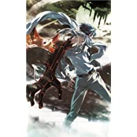 Dies irae ~Amantes amentes~ [First Print Limited Edition] [Japan Import] by Light [並行輸入品]