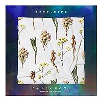 【早期購入特典あり】 ピッパラの樹の下で (初回限定盤) (ライブ音源CD付)