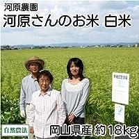 【30年度産】 河原さんのお米 白米 約18kg 自然農法無農薬米 (岡山県 河原農園) 産地直送 ふるさと21