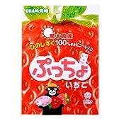 味覚糖 ぷっちょ袋ひのしずく 100g×6袋