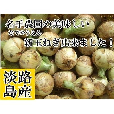 名手農園 淡路島 たまねぎ 2017年産 玉ねぎ 【わけあり】 5kg(20〜30個) 期間限定サービス価格で販売中!