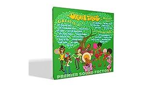 PREMIER SOUND FACTORY ハイレゾドラム音源 「Drum Tree」箱パッケージ版