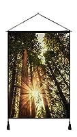(森の木の日光グレア自然)自然風景 アートプリント 壁掛けポスター、家の装飾ポスター、絵画(60x80cm)