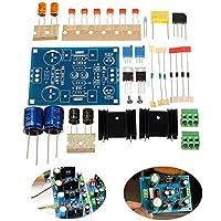 ランフィー LM317 調整可能なフィルタリング電源 LM337 電圧レギュレータモジュール DIY キット -