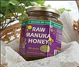 マヌカハニー アクティブ15+ ローフード! たっぷり340g UMF高配合!ピロリ菌抑制・美肌に♪ / Y.S. Organic Bee Farms
