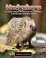 Kids Books: Amazing Pictures & Fun Facts on Animals in Nature about Hedgehogs for Kids