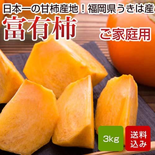 柿 3kg 富有柿 2L 10玉前後 青秀 家庭用 柿 ふゆ柿 福岡産