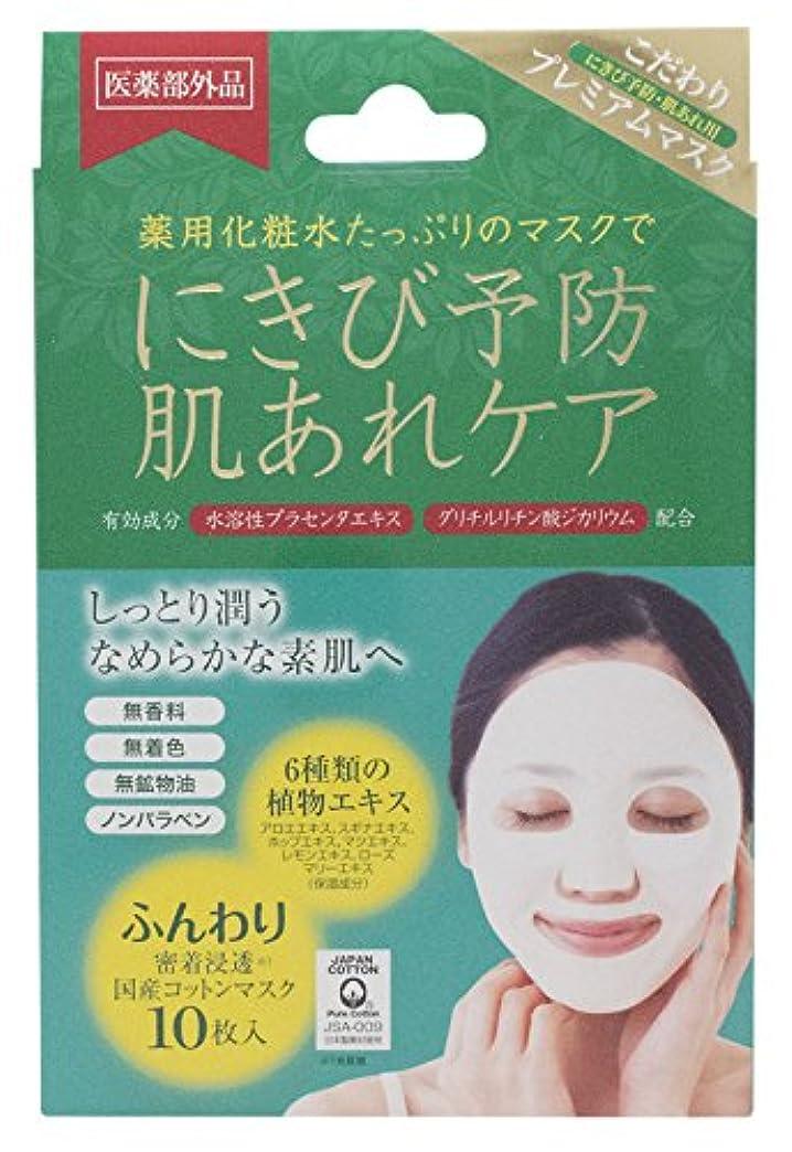 加速度音節統計アクネピュアスキンフェイスマスク 10枚 (医薬部外品)