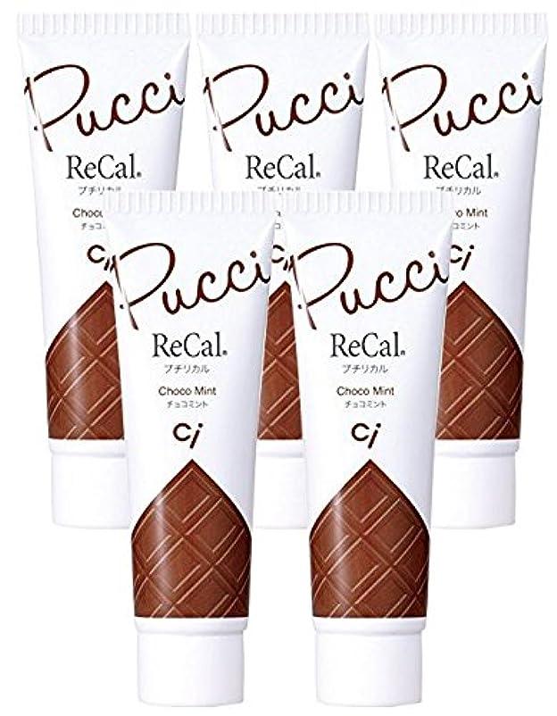 花火知的表面的なプチリカル チョコミント 5本
