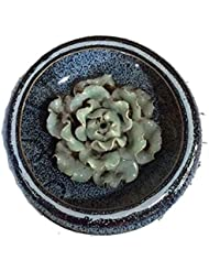 (ラシューバー) Lasuiveur 香炉 線香立て 香立て 職人さんの手作り 茶道用品 おしゃれ