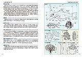 日本の海水魚と海岸動物図鑑 1719種 画像
