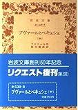 ブヴァールとペキュシェ (中) (岩波文庫)
