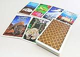 アニマルメディスン オラクルカード 精霊動物52種 日本語説明紙付き ANIMAL MEDICINE ORACLE CARDS 52KINDS