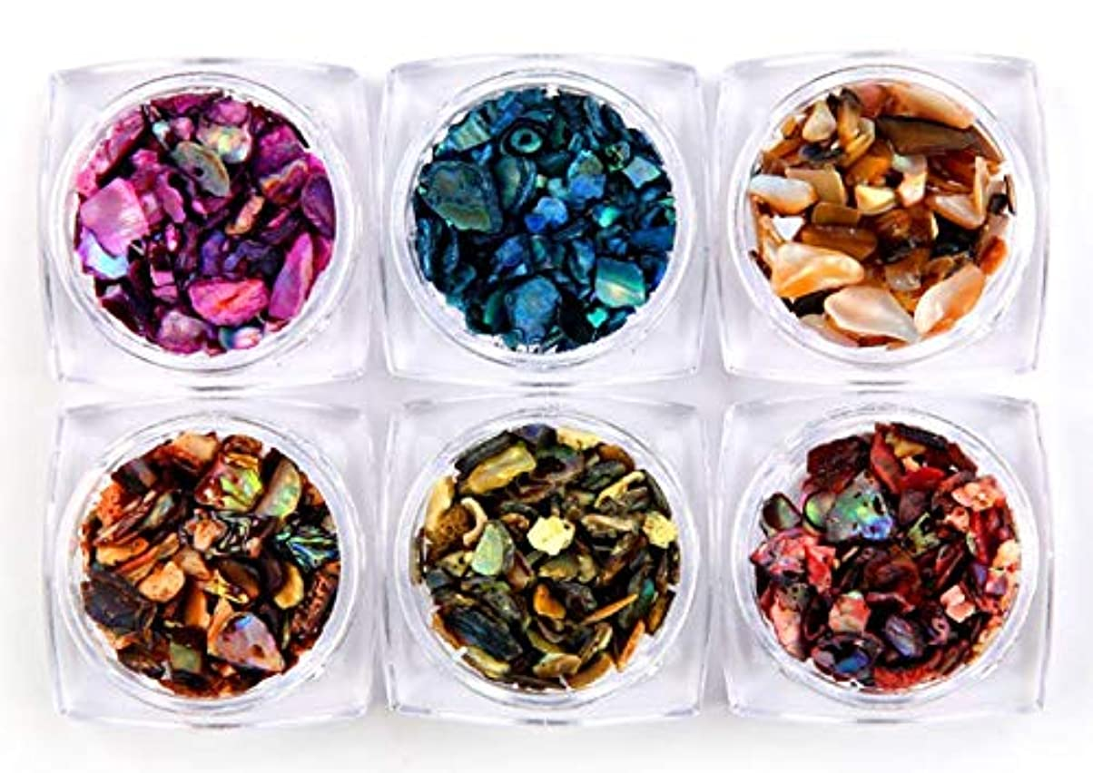 バーターオーディション衝動ェルネイル 貝殻石 6色セット 自然風 超薄 シェルフレーク (シェル)