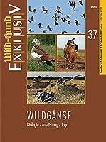 Wildgaense (Wild & Hund Exkl. 37): Biologie - Ausruestung - Jagd
