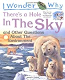 I Wonder Why There's a Hole in the Sky: and Other Questions About the Environment 画像