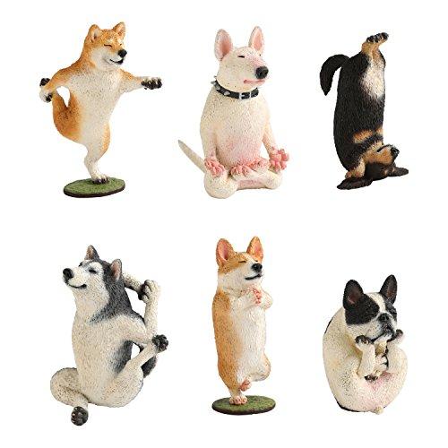 ANIMAL LIFE 犬のヨガマスター 1BOX(6個入)