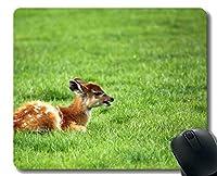 アフリカの動物アンテロープブラウンとマウスパッド - ステッチエッジ