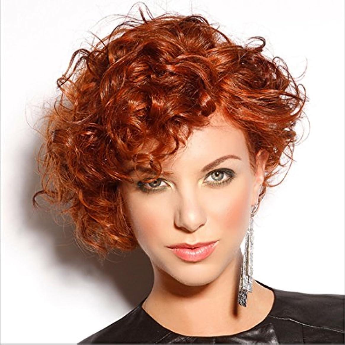 ピンチ騒乱進捗JIANFU 女性のための20cmのボボヘッドのウィッグ若者のパーソナリティの女性のための部分的な斜めバンズウィッグの短いカーリーヘアー (Color : Wine red)