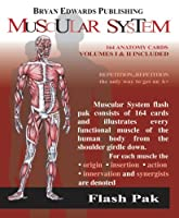The Muscular System: Volumes 1 and 2 (Flash Paks/Volumes 1 and 2)