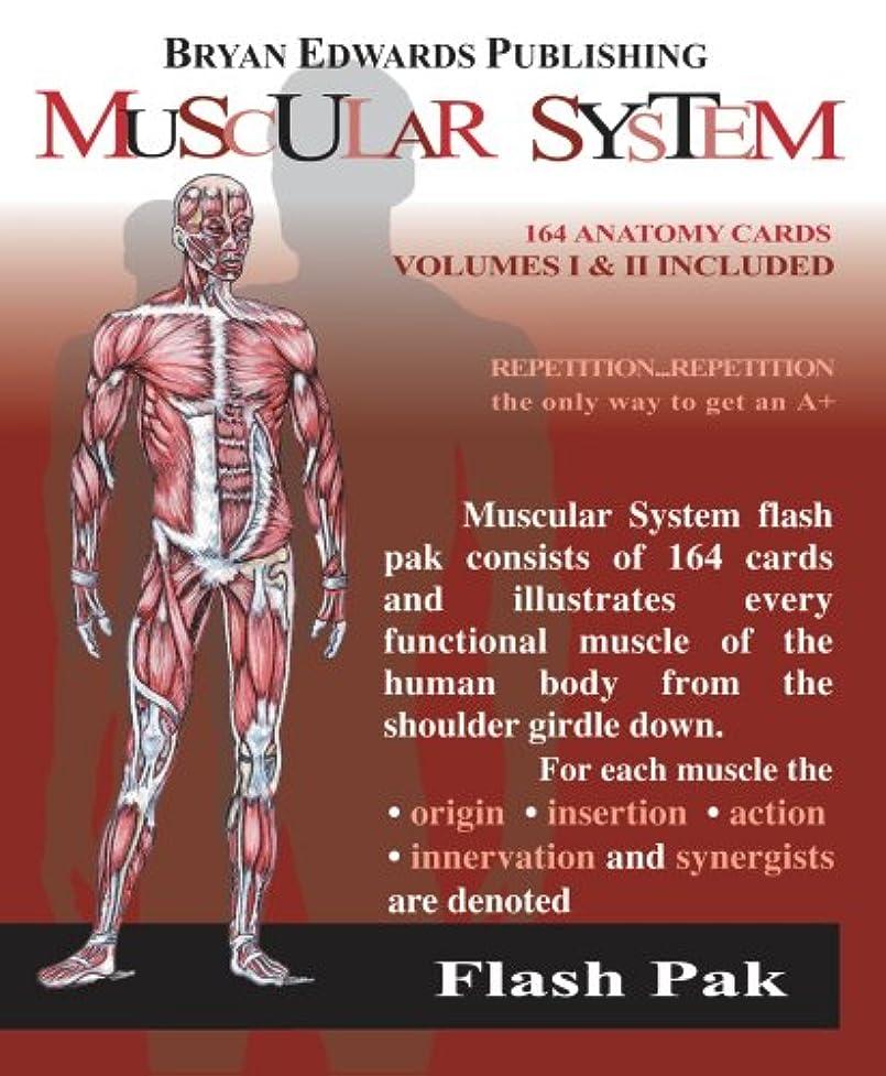 大陸欠如コンバーチブルThe Muscular System: Volumes 1 and 2 (Flash Paks/Volumes 1 and 2)