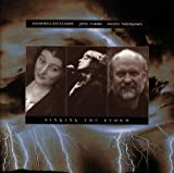 Singing the Storm 画像