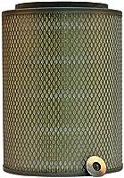 Luber-finer LAF1846 Heavy Duty Air Filter [並行輸入品]