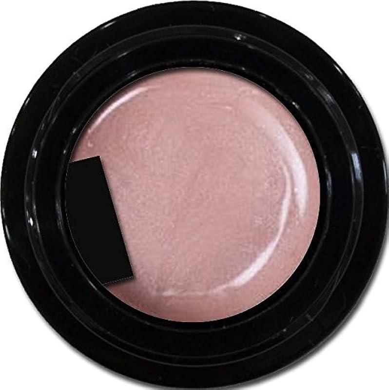 ゆりかわいらしいお別れカラージェル enchant color gel P304 PlumPink 3g/ パールカラージェル P304プラムピンク 3グラム