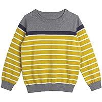 Mini Phoebee Boys' Pullover Sweater Crew Neck Cotton Stripe Knit Sweater