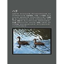 Hachi: Suzumebachi, Seiyoumitsubachi, Afurikanaizudomitsubachi, Seiyouoomaruhanabachi, She Hui Xing K N Chong, Hachi Mu, Haba