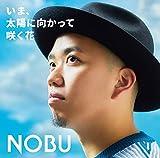 name. / NOBU