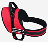 犬用 リード ハーネス 胴輪 可愛い しっかり 頑丈 各種 サイズあり (赤 L)