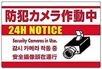 表示看板 「防犯カメラ作動中」 白地 英語/中国語/韓国語入り 反射加工あり 小サイズ 30cm×45cm VH-199SRF