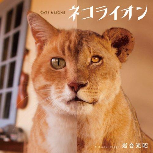 ネコライオンの詳細を見る