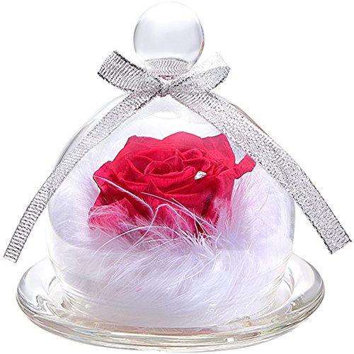 TEATSIGHT プリザーブドフラワー フラワーアレンジ ラッピング済み バラ スワロフスキー 羽根 (ピンク)