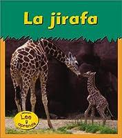 La Jirafa / Giraffe (Animales Del Zoologico)